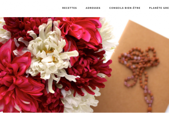 Blog the green wild