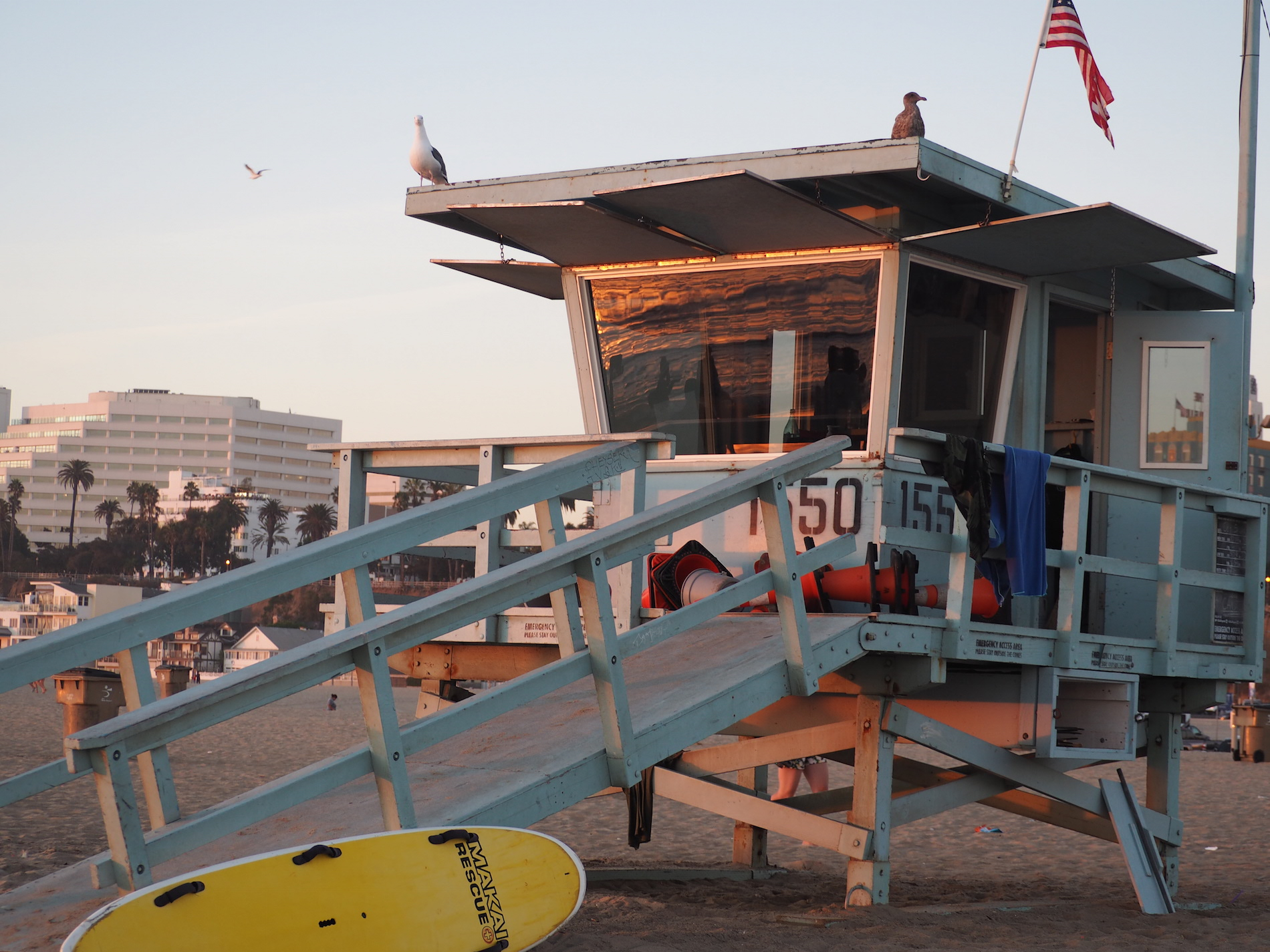 Los Angeles Lifeguard