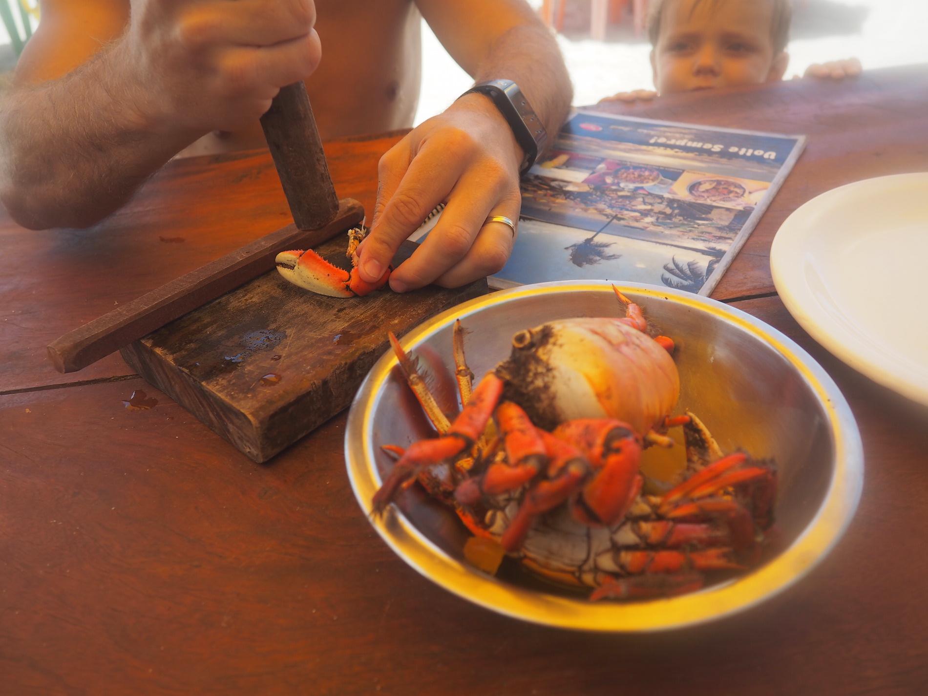 crabe_plage_bresil