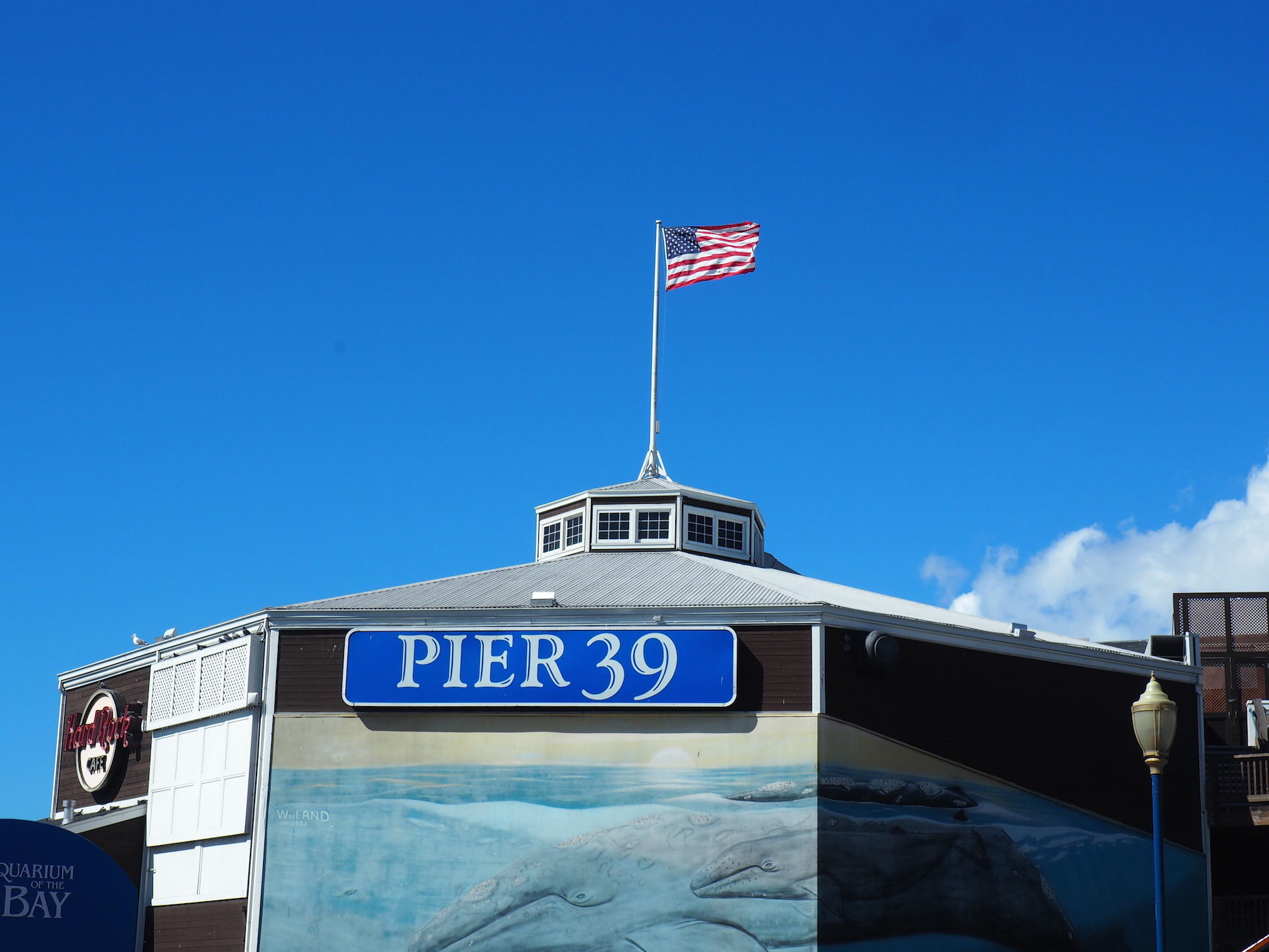 SanFrancisco-Pier39