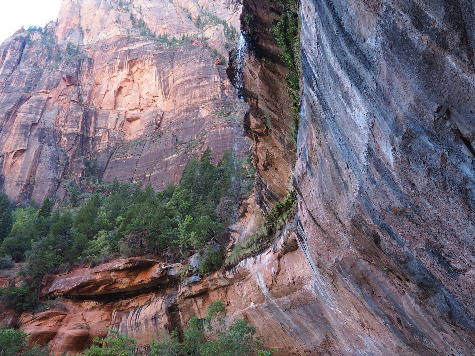 zion_national_parc_en_famille