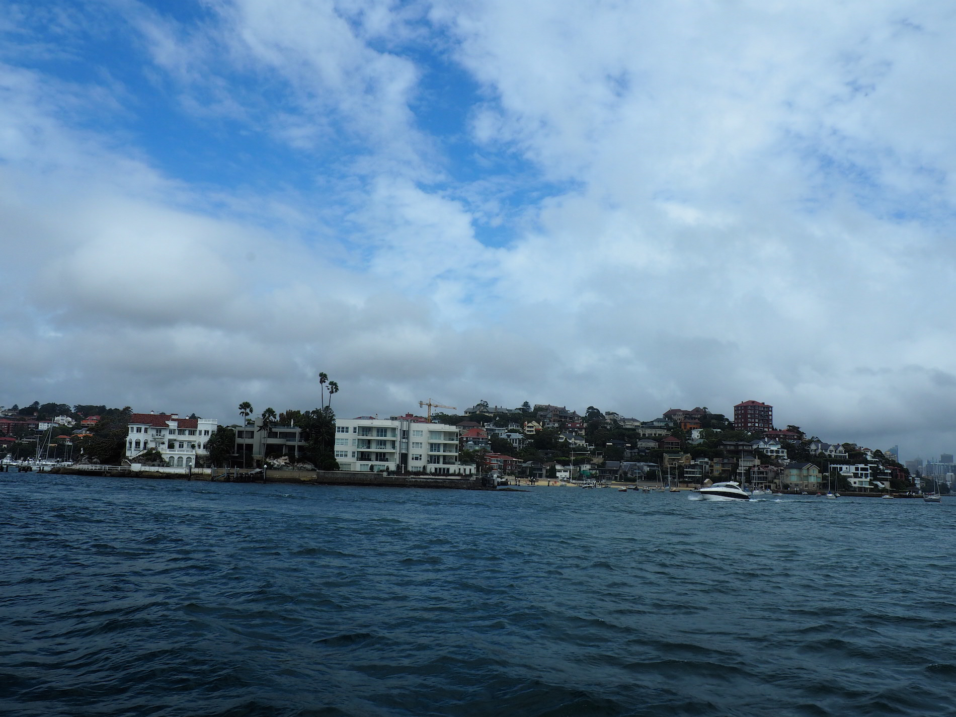 ferry_sydney