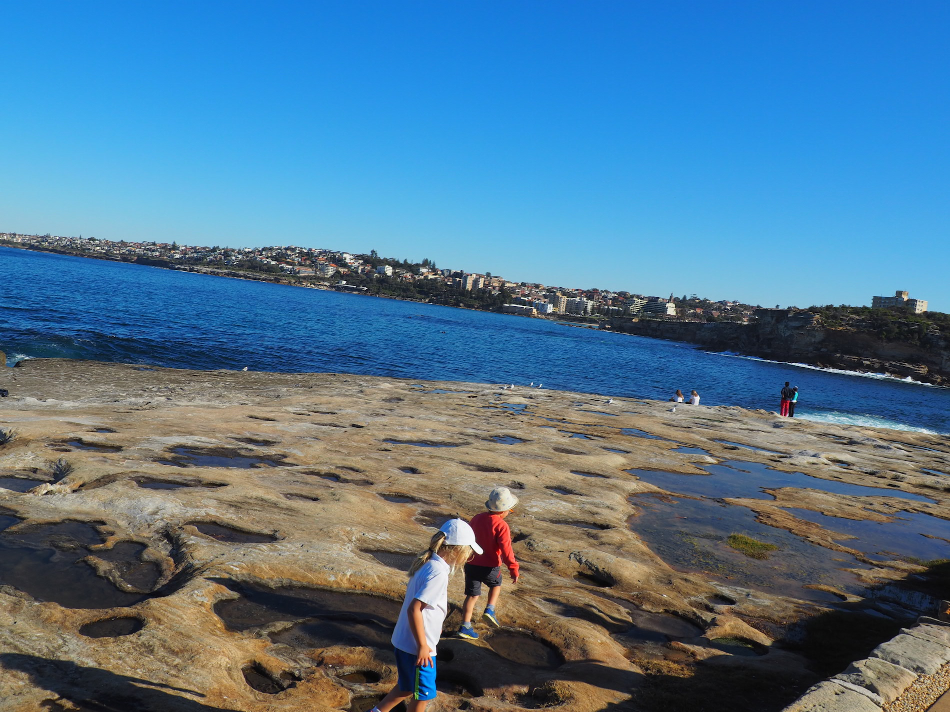 coastalwalk_sydney