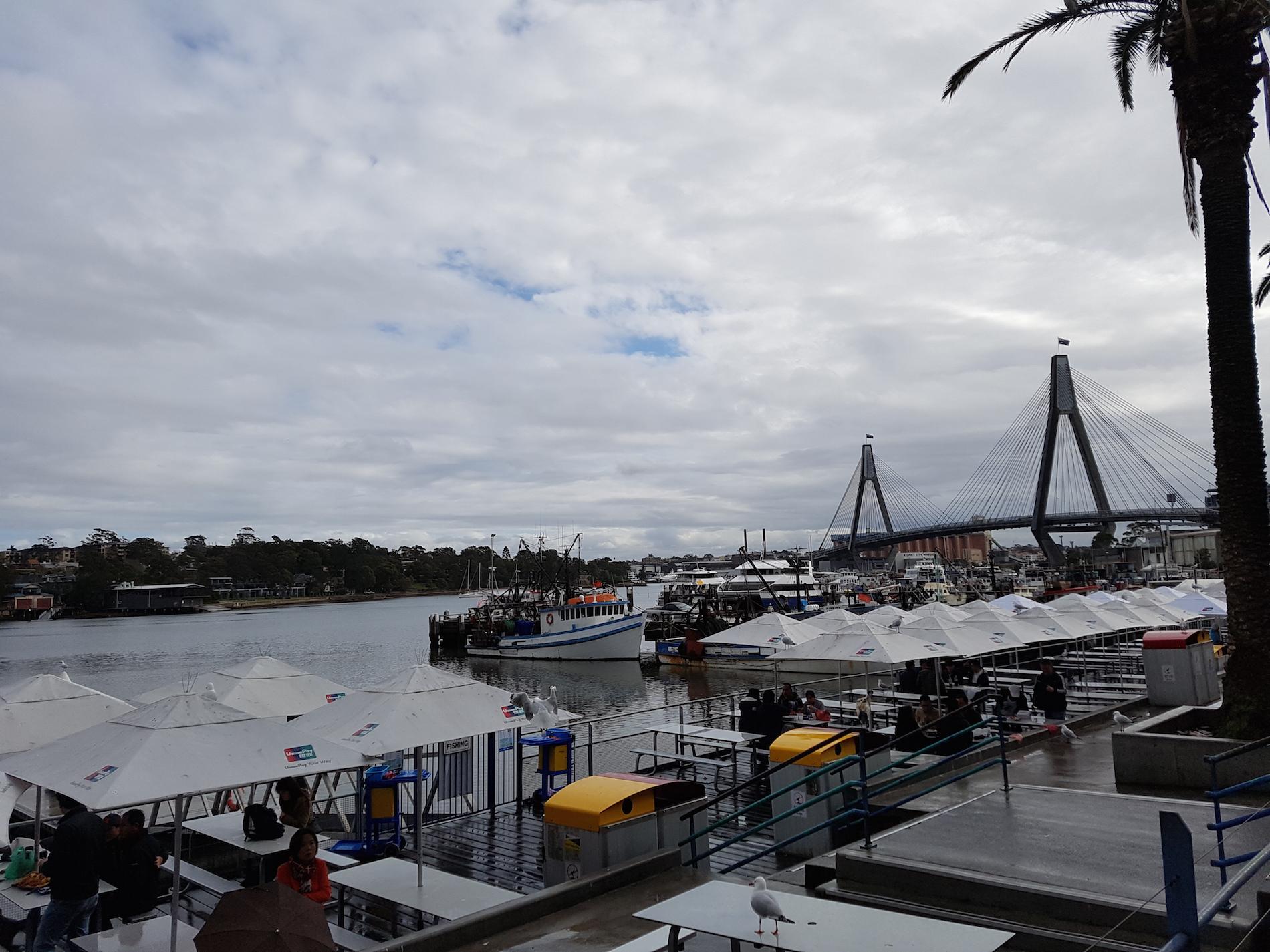 fish_Market_sydney_01